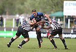 No way through for Leinster A flanker Dominic Ryan as Pontypridd pair Keiron Jenkins and Chris Dicomidis close the gap.<br /> British & Irish Cup Semi Final<br /> Pontypridd v Leinster A<br /> Sardis Road - Pontypridd<br /> <br /> ©Steve Pope-SPORTINGWALES