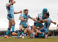 Exeter Chiefs' Tom O'Flaherty celebrates his sides fourth try with Exeter Chiefs' Jack Nowell <br /> <br /> Photographer Bob Bradford/CameraSport<br /> <br /> European Rugby Heineken Champions Cup Pool 2 - Exeter Chiefs v Castres - Sunday 13th January 2019 - Sandy Park - Exeter<br /> <br /> World Copyright © 2019 CameraSport. All rights reserved. 43 Linden Ave. Countesthorpe. Leicester. England. LE8 5PG - Tel: +44 (0) 116 277 4147 - admin@camerasport.com - www.camerasport.com