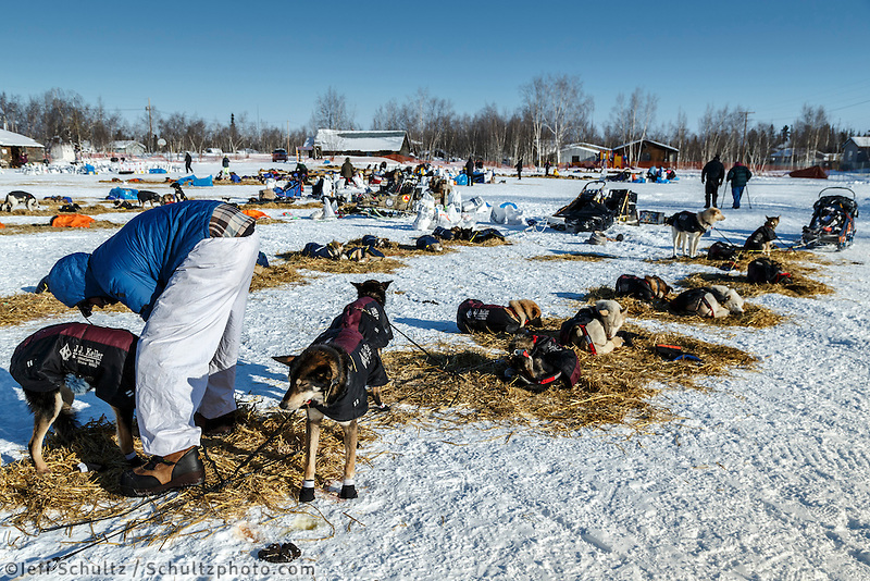 Christian Turner boots his dogs just prior to leaving in the afternoon at the Huslia checkpoint on Saturday  March 14, 2015 during Iditarod 2015.  <br /> <br /> (C) Jeff Schultz/SchultzPhoto.com - ALL RIGHTS RESERVED<br />  DUPLICATION  PROHIBITED  WITHOUT  PERMISSION