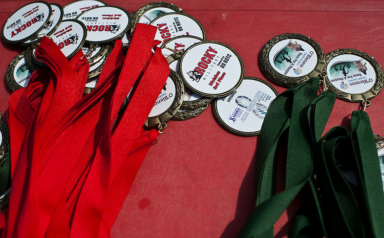 Pictured are medals for Race for a Reason participants that run in the triathlon, 5K or Mud Run Saturday, April 27, 2013. Race for a Reason, Race 4 A Reason, Annual Events, Events, Students, Faculty & Staff