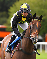 Lunar Deity ridden by Julia Egstrom goes down to the<br /> start of The Gift Of Sight Handicap during Evening Racing at Salisbury Racecourse on 3rd September 2019