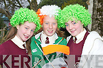 HAIRDO: Sarah OConnell, Niamh OConnell and Elaine OConnor adding colour at the Castleisland St Patricks Day Parade on Saturday..
