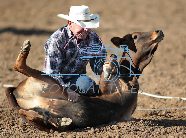Russell Funk competes in the calf-roping event at the Minden Ranch Rodeo action Saturday, July 21, 2012..Photo by Cathleen Allison