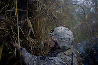 A US engineer from the SAPPERS unit attached to   Alfa companny, 1st battalion, 506th regiment, 101st airborne division searches for enemy weapons along side the river  while conducting opearation Hudini, a dismounted ( on foot) raid with the purpose of finding enemy weapons, ammunitions and engaging the insurgency on FRI Jan 13 2006 in Ramadi, Al Anbar Province, Iraq. Alfa company left its forward operationg base named combat outpost at 0500 AM with an initial plan of returning after a few hours. after navigating in the misty riverside until the sun raised they raided a compound finding more than 900 pounds of enemy ammunitions burried in its perimeter. after the engeneers attached to the unit retreived all the explosives alfa company begun reciving mortars and small arm fire from the opposite side of the river. the unit had to remain on location to secure the area until the engineers detonated the cache. Meanwhile CPT Roberts, alfa ccompany's commanding officer was launching patrols in the area discovering a 500 pound improvvised explosive device on a road side that later was detonated by a Marine EOD bomb squad. during exctraction the unit exchanged fire on the open with the insurgency and after 12 hours they returned to their base.