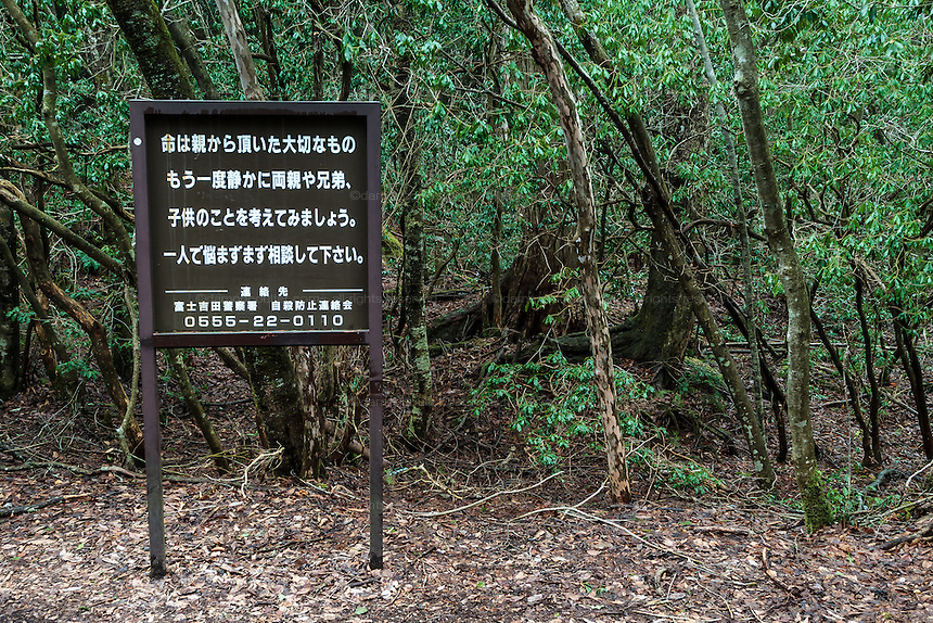 "A sign telling potential suicidal people to ""Think of their families"" at the borders of the Aokigahara Forest, known as the suicide forest, near Mount Fuji in Yamanashi Prefecture, Japan. Monday March 21st 2016"
