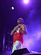 "Largo, MD - July 12, 2014: Grammy award winning Hip Hop entertainer and actor Ludacris performs at the 1st annual International Festival at the Largo Town Center in Largo, MD, July 12, 2014. He is also known for his roles in the ""Fast and Furious"" movies. (Photo by Don Baxter/Media Images International)"