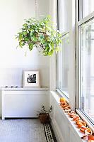 ornaments on a window sill