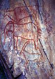 ZIMBABWE, Victoria Falls, Africa, Petroglyphs on a cave wall near Victoria Falls