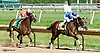 Back Forty winning The Damitrius Stakes at Delaware Park on 9/4/13