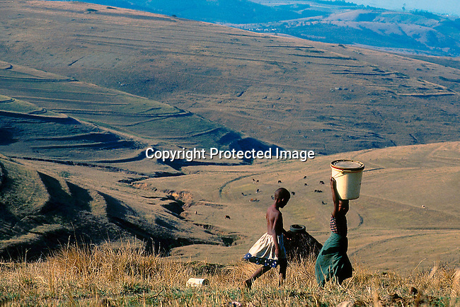 LSRURAL30001.Lifestyle. Rural. Kwazulu-Natal. Two young black girls are walking in the field. One girl carries a bucket on her head. Hills and cattle in the background. 99..©Per-Anders Pettersson/iAfrika Photos