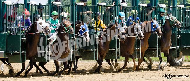 Magic Lion winning at Delaware Park racetrack on 6/16/14