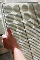 Europe/Europe/France/Midi-Pyrénées/46/Lot/Loubressac: Ferme Cazal-SARL Les Alpines - Production du Rocamadour AOC Fermier  les fromages frais moulés vont  partir sur des grilles pour l'affinage