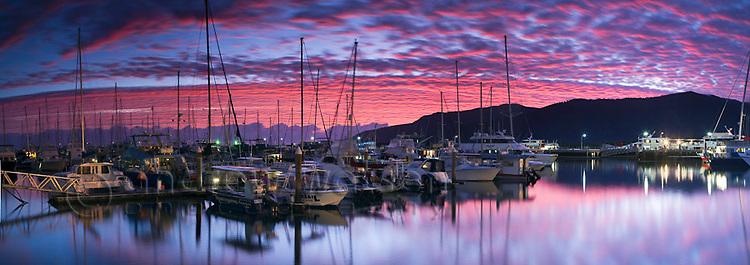 Boats in Marlin Marina at dawn.  Cairns, Queensland, Australia