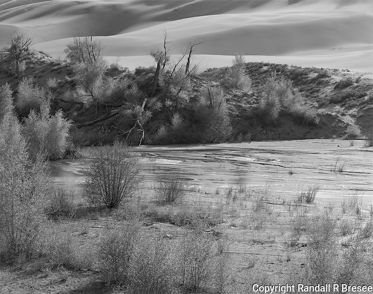 &quot;Medano Creek&quot; Great Sand Dunes National Park, Colorado<br /> <br /> This photographed was taken from the Sand Pit trail in The Great Sand Dunes National Park and Preserve in Colorado. The black and white photograph shows a good example of the full light which often bathes the dune area.