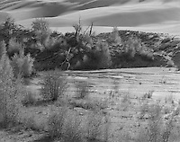 &quot;Medano Creek&quot; Great Sand Dunes National Park, Colorado<br />