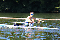 Race: 4  Event: Championship 1x<br /> Crew: 81  Club: Camb. Univ W (A)<br /> <br /> Henley Women's Regatta 2018<br /> Friday<br /> <br /> To purchase this photo, or to see pricing information for Prints and Downloads, click the blue 'Add to Cart' button at the top-right of the page.