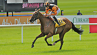 Rock on Ciara (no. 12), ridden by Shane Foley and trained by Joseph Murphy, wins the Summer Fillies Fillies Handicap for fillies three years old and upward on June 30, 2012 at the Curragh Racecourse in Newbridge, Kildare, Ireland.  (Bob Mayberger/Eclipse Sportswire)