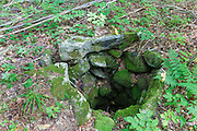 A stoned lined dug well at an abandoned homestead along an old road off Tunnel Brook Road in Easton, New Hampshire. Based on an 1860 historical map of Grafton County (when this area was part of Landaff) this was the O. Brook homestead. Today, this well is still about 15 feet deep.