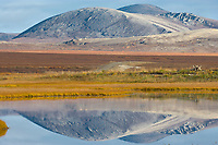 Kigluaik mountains reflect in wetlands pond near Solomon along the Council highway on the Seward Peninsula, western arctic, Alaska.