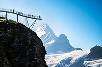 The Grindelwald First Cliff Walk, with the Schreckhorn in the background, Switzerland