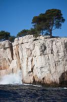 Europe/France/Provence-Alpes-Côte d'Azur/13/Bouches-du-Rhône/Cassis: Calanque de Port-Pin