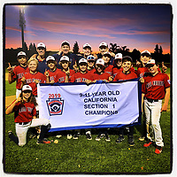 VACAVILLE, CA - JULY 18:  iPhone Instagram of the Mill Valley Little League 11's All Stars after they won the section 1 tournament at John Arlington Park on July 18, 2019 in Vacaville, California. (Photo by Brad Mangin)