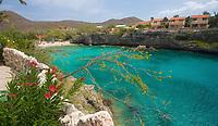 EC- Playa Lagun - Taxi Max Curacao Tour - as part of HAL Koningsdam S. Caribbean Cruise, Curacao