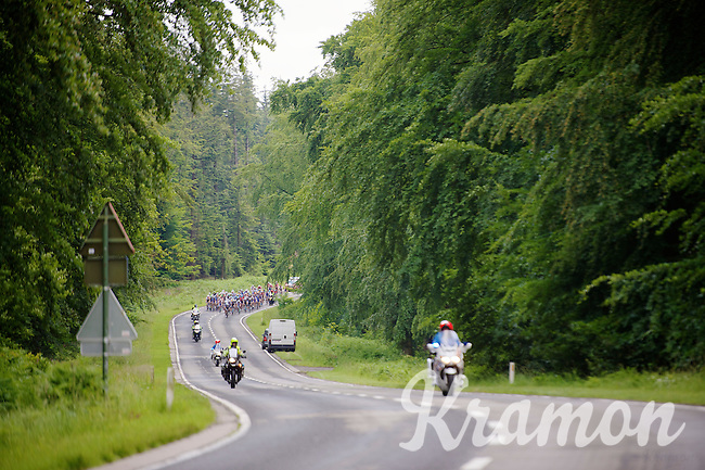 peloton through the forest<br /> <br /> Ster ZLM Tour 2014