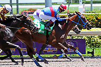 HALLANDALE BEACH, FL - JULY 01:   #5 Rose to Fame (KY) wth jockey Edgar Zayas on board, wins the Brave Raj  Stakes for 2 year old fillies, on Summit Of Speed Day at Gulfstream Park on July 01, 2017 in Hallandale Beach, Florida. (Photo by Liz Lamont/Eclipse Sportswire/Getty Images)