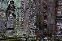 Ta Prohm Siem Reap Cambodia