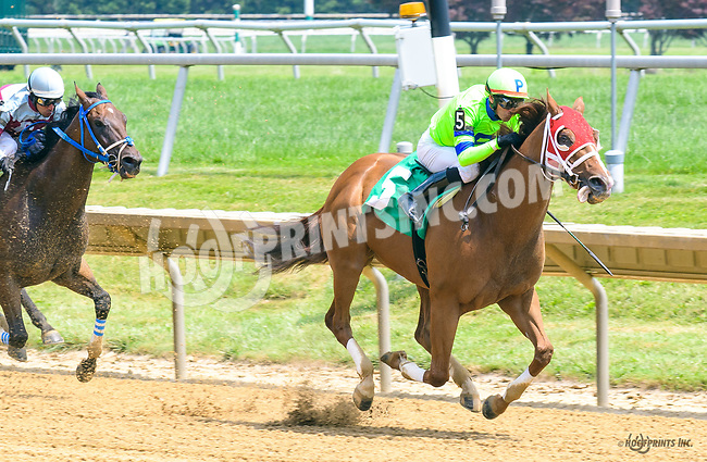 Haywired winning at Delaware Park on 7/20/17