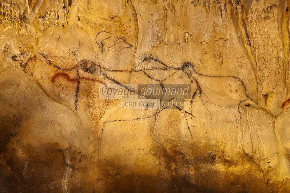 Europe/Europe/France/Midi-Pyrénées/46/Lot/Payrignac: Grottes de Cougnac - grotte ornée du paléolithique. Mégalocéros noir [Non destiné à un usage publicitaire - Not intended for an advertising use]