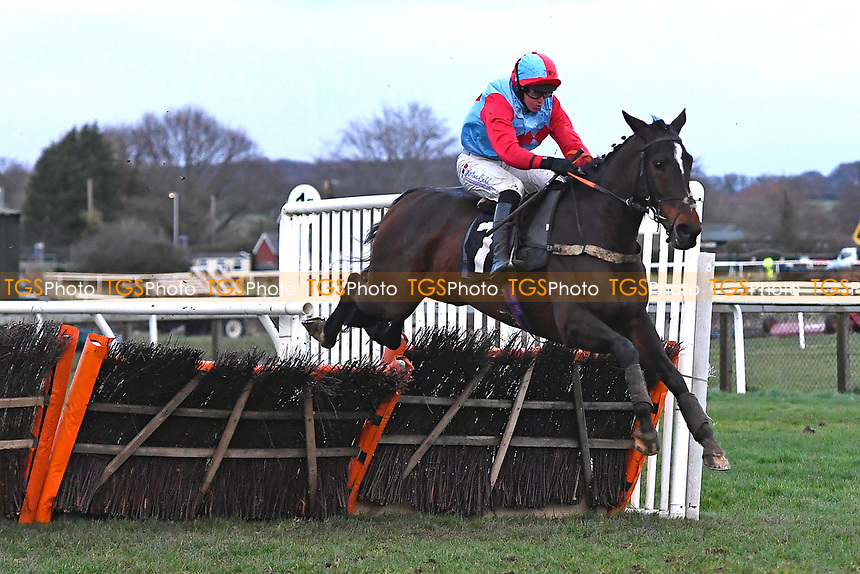 Winner of The Sky Sports Racing Mares' Handicap Hurdle  Amlovi ridden by Ben Pose and trained by Adrian Wintle  during Horse Racing at Plumpton Racecourse on 10th February 2020