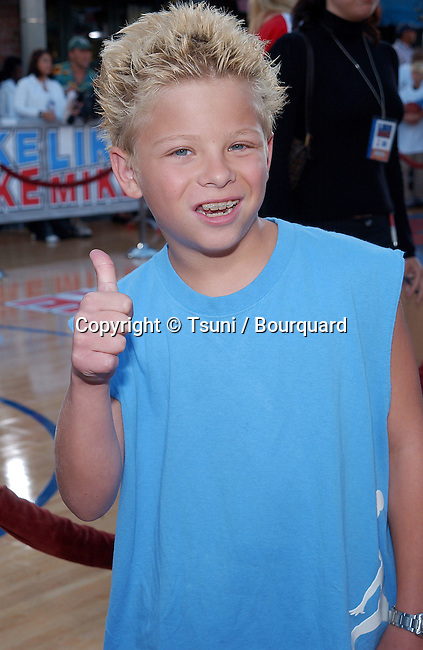 Jonathan Lipnicki posing at the premiere of Like Mike at the Westwood Theatre in Los Angeles. June 27, 2002.           -            LipnickiJonathan03.jpg