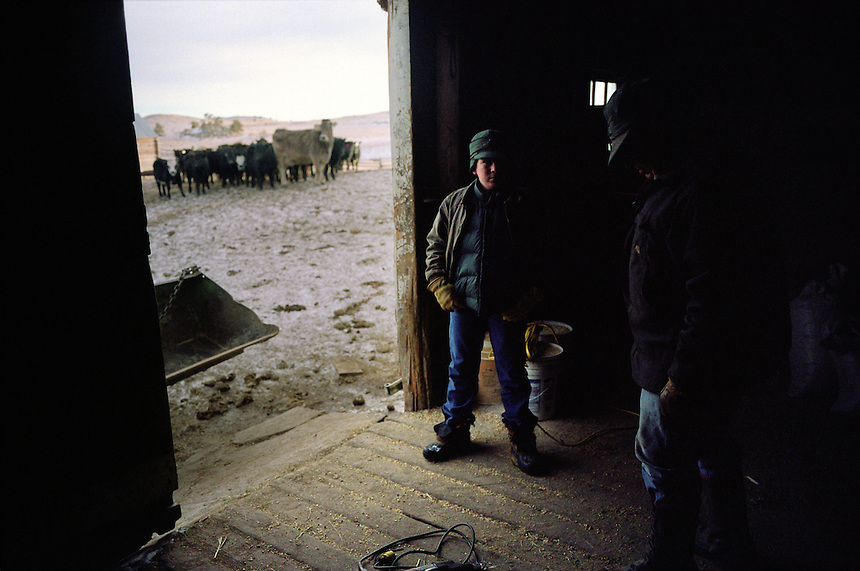 Joe Kennedy, 13, the lone student at Cozy Hollow Elementary School on the Kennedy ranch in Wyoming, waits in a barn with grandfather Gene Kennedy before working with cattle at rear. Wyoming, one of the nation's most rural states, supports many isolated schools with few students. (Kevin Moloney for the New York Times)