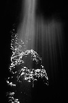 Milne Bay, Papua New Guinea; Light rays shining through the shallow water along the rocky shore