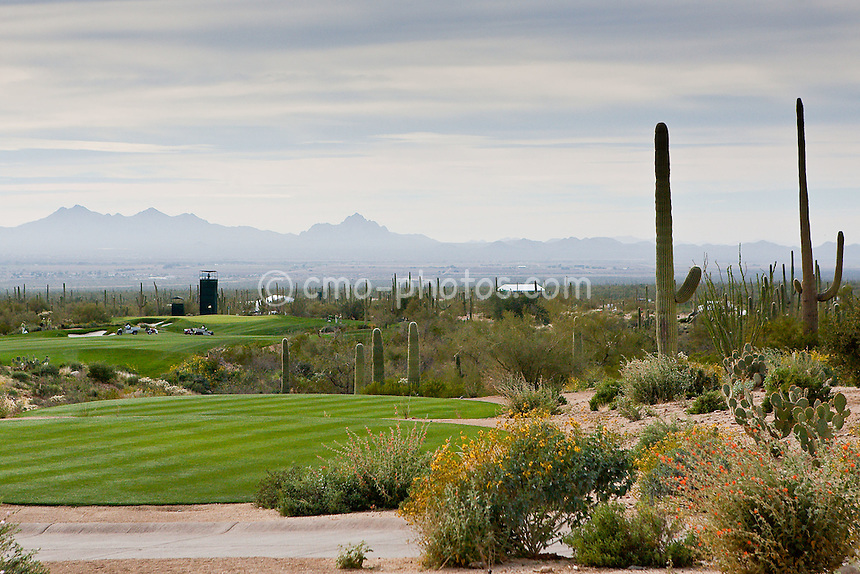 Feb 23, 2009; Marana, AZ, USA; A view of the opening tee shot from the 1st tee of the new Ritz-Carlton Golf Club, Dove Mountain during a Monday practice round prior to the World Golf Championships-Accenture Match Play Championship.