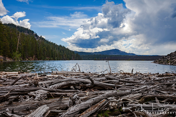 Butte Lake in Lassen Volcanic National Park is fed only by the snowpack and feeds Butte Creek on its north eastern shore where the logs gather.