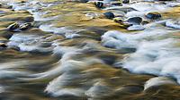 Current, South Fork Mckenzie River, Oregon