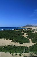 Sand dunes Corralejo, Fuerteventura, Canary Islands.