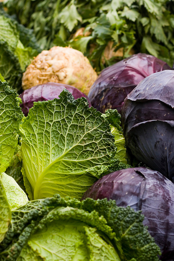 Fresh Food - Cabbage
