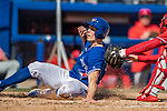 6 March 2019: Toronto Blue Jays outfielder Randal Grichuk is tagged out at the plate to end the 4th inning of a Spring Training game against the Philadelphia Phillies at Dunedin Stadium in Dunedin, Florida. The Blue Jays defeated the Phillies 9-7 in Grapefruit League play. Mandatory Credit: Ed Wolfstein Photo *** RAW (NEF) Image File Available ***