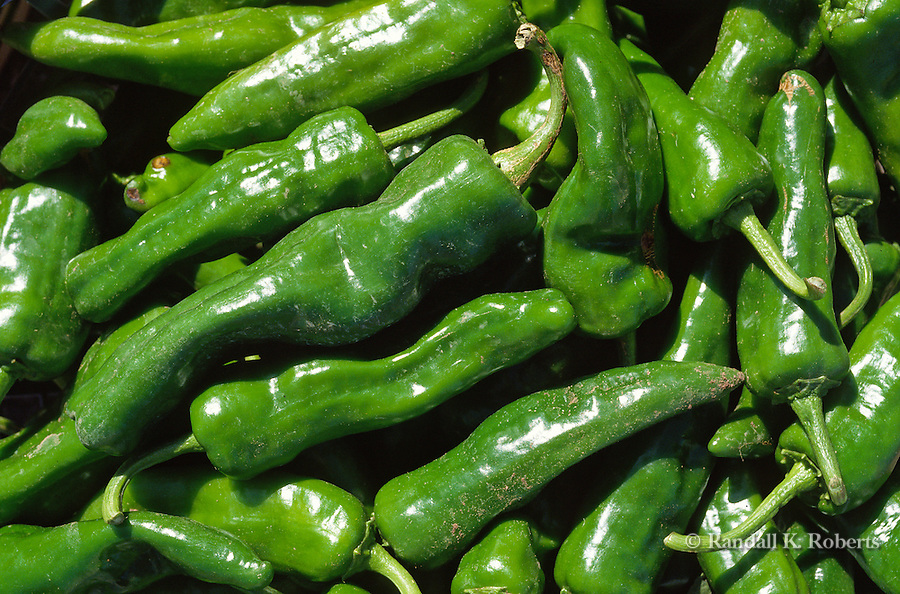 Green chiles for sale, north of Santa Fe, New Mexico