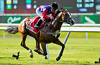 ELMONT, NY - JUNE 08: Call to Mind, #1, ridden by Javier Castellano, owned and bred my Her Majesty Queen Elizabeth II, wins the Belmont Gold Cup Invitational during Friday racing action of the Belmont Stakes Festival at Belmont Park on June 8, 2018 in Elmont, New York. (Photo by Scott Serio/Eclipse Sportswire/Getty Images)