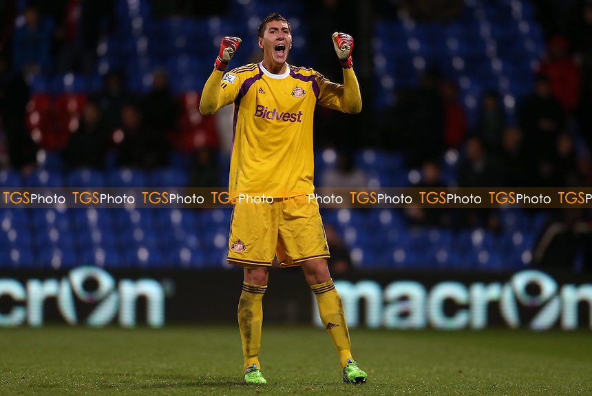 Costel Pantilimon of Sunderland celebrates towards the Sunderland fans at the final whistle- Crystal Palace vs Sunderland - Barclays Premier League Football at Selhurst Park, London - 03/11/14 - MANDATORY CREDIT: Simon Roe/TGSPHOTO - Self billing applies where appropriate - contact@tgsphoto.co.uk - NO UNPAID USE