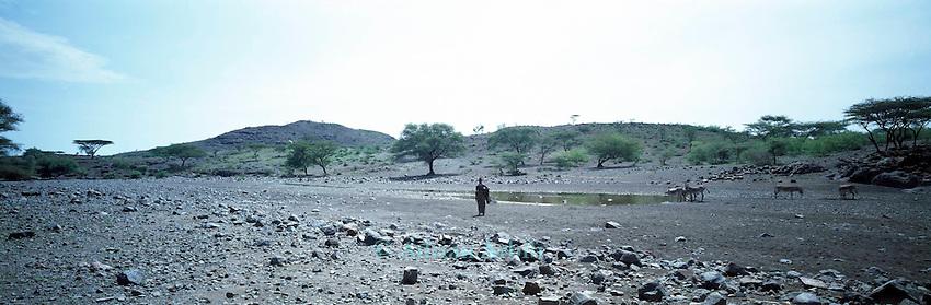 Northern Turkana  waterhole