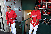 ANAHEIM - OCTOBER 9:  Maicer Izturis and Erick Aybar of the Los Angeles Angels of Anaheim get ready in the dugout before Game 2 of the American League Division Series against the Boston Red Sox at Angel Stadium on October 9, 2009 in Anaheim, California. Photo by Brad Mangin
