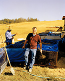 USA, California, Sonoma, portrait of chardonnay wine producer Mark Aubert holding shoots that are ready for planting, Silver Eagle Vineyard, Sonoma County