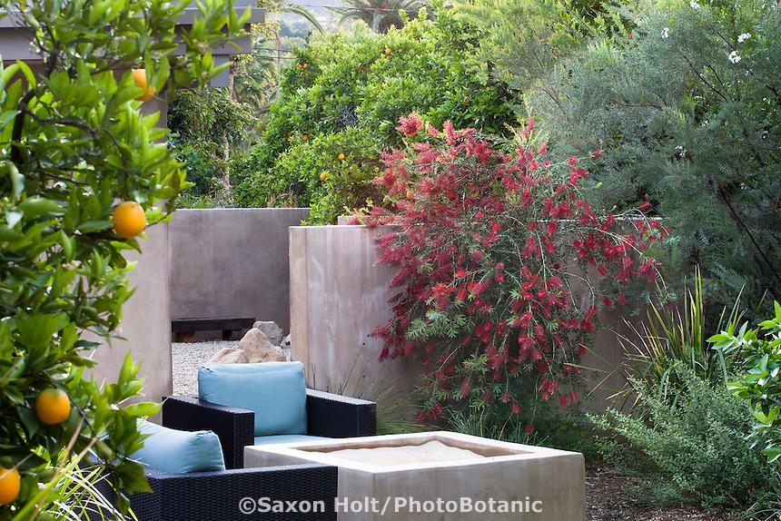 holt_1130_073.CR2 | PhotoBotanic Stock Photography Garden Liry on planting a garden, drought tolerant landscape design, modern planting design,