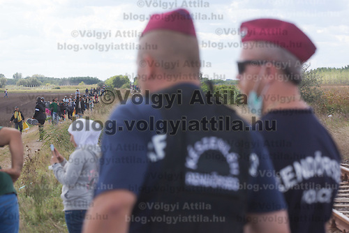 Police officers standing guard watch as illegal migrants flow into the country near Roszke (about 174 km South of capital city Budapest), Hungary on September 07, 2015. ATTILA VOLGYI